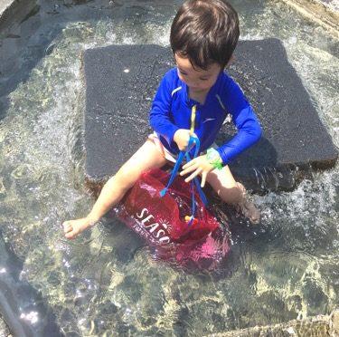 【暑過ぎ】水に入る以外考えられない
